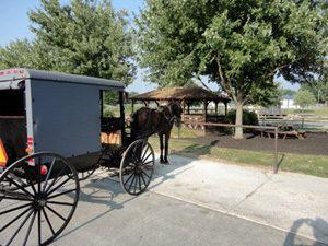 (Horse&Buggy)DSC00214