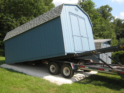Shed Delivery Clematis Romantika Clematis Hay Storage